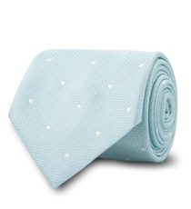 The Mint Newton Dot Tie