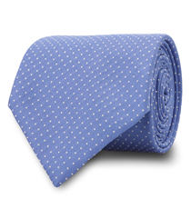 The Blue Walton Micro Dot Tie